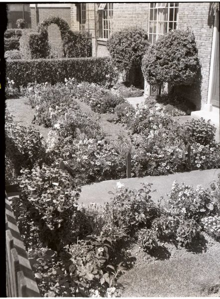 Winning garden on the Becontree Estate in 1952