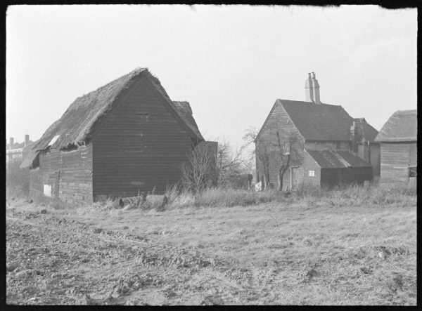 Rose Lane Farm in 1954